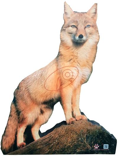 Guineu-Zorro-Fox-Renard