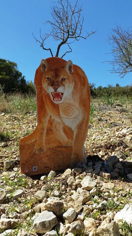 Puma-Puma-Puma-Puma