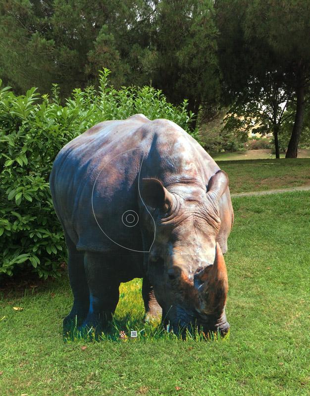 Rinoceronte-Rinoceront-Rhinocéros-Rhinoceros