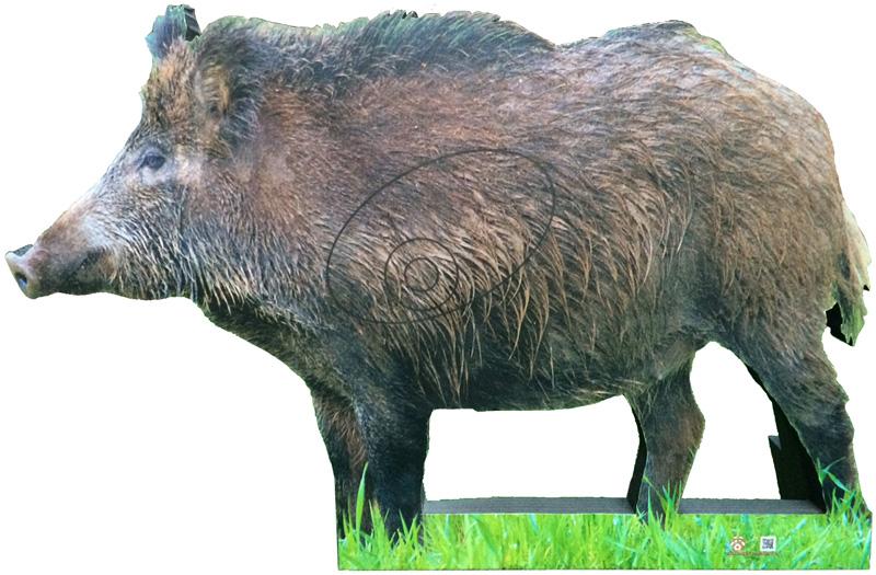 Wild boar-Verrat-Jabalí-Senglar (135 x 88 cm) Image