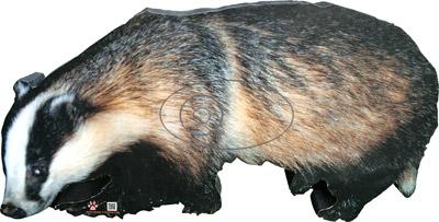 Teixó-Tejón-Badger-Blaireau