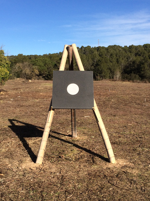 80 x 80 cm training target